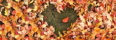 Why Fall Is The Best Season Why Autumn Is The Best Season