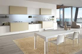 Latest Modern Kitchen Design by Gorgeously Minimal Kitchens With Perfect Organization