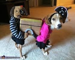 Treasure Chest Halloween Costume 40 Halloween Pet Costumes Treats Tips Images