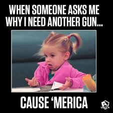 Right To Bear Arms Meme - 108 best right to keep and bare arms images on pinterest weapons