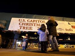 Christmas Tree Stop - capitol christmas tree to make stop in great falls en route to d c