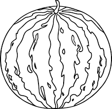 watermelon image summer coloring page wecoloringpage