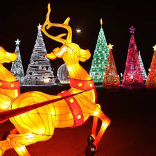 the top places to see christmas lights in d fw guidelive