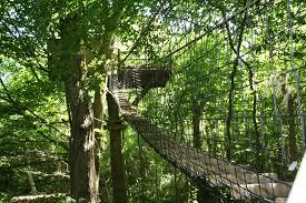 chambre d hote cabane dans les arbres chambre d hote cabane dans les arbres 1 cabane dans les arbres en