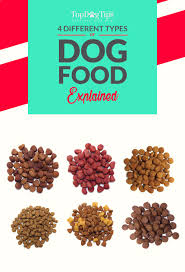 4 different types of dog food u0026 how to pick the best one