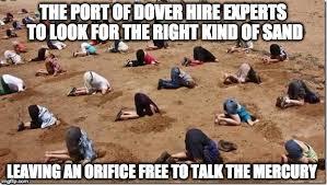 Sand Meme - head in sand memes imgflip