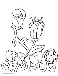 flowers coloring page crayon action coloring pages