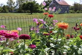 square foot gardening flowers sustainable heirloom gardening the white house farm foundation