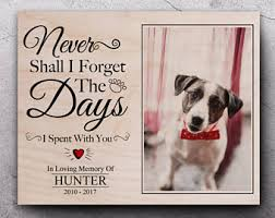 remembrance picture frame pet remembrance etsy