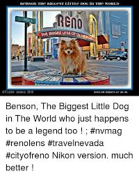 Benson Dog Meme - 25 best memes about ya like jazz ya like jazz memes