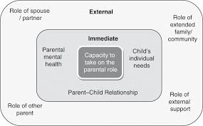 assessment and formulation of parenting