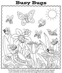 preschool coloring pages bugs bugs coloring page stink bug beetle coloring pages bug coloring