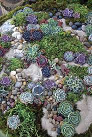 How To Build A Rock Garden Bed 20 Beautiful Rock Garden Design Ideas Shelterness
