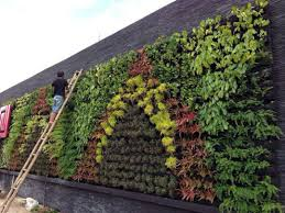 40 extraordinary vertical garden for green and cool house