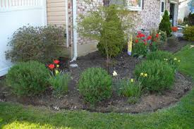 Plants For Front Yard Landscaping - front yard landscaping we did it ourselves family balance sheet