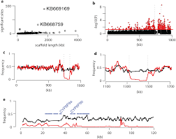 genomic footprints of selective sweeps from metabolic resistance