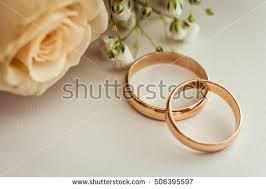 Beautiful Wedding Rings by Wedding Rings Lie On Beautiful Wedding Stock Photo 506395573