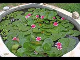 diy decorating ideas for small garden pond ideas youtube