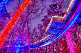 Botanical Gardens Atlanta Christmas Lights by Photos Gac