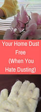 tips for keeping your home dust free when you dusting