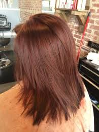 light mahogany brown hair color with what hairstyle brown hair with hints of red pinteres