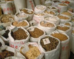native plants in china plants drugs and rocky soil kew