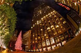 sf u0027s tallest christmas tree funcheapsf com