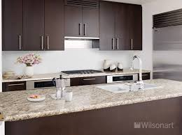 Laminate Kitchen Designs Wilsonart Laminate Wilsonart Laminate Pinterest Kitchens