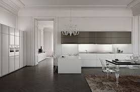 brilliant kitchen cabinets by scic decoholic