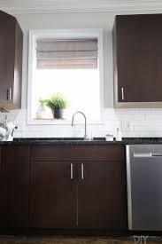 Under Kitchen Sink Cabinet How To Organize The Cabinet Under Your Kitchen Sink