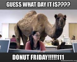 Donut Meme - guess what day it is donut friday 111 hump day camel