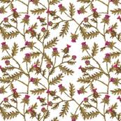 thistle sketch on charcoal linen fabric thistleandfox spoonflower