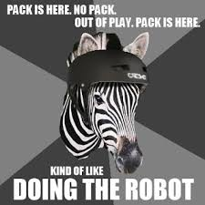 Roller Derby Meme - the paper ecdysiast the meme team otters and zebras oh my