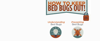Bed Bug Heat Treatment Cost Estimate by Bed Bug Treatment Va Heat Treatment For Bed Bugs Virginia Maryland