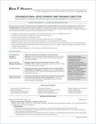 resume template in word resume template word it professional kantosanpo
