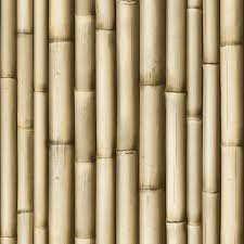 photo collection bamboo wallpaper uk free