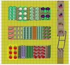 the 25 best vegetable garden layouts ideas on pinterest garden
