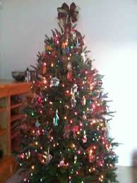 merry show me trees tree colors decorating ideas decorated