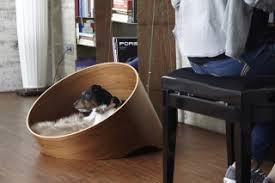 Cats In Dog Beds The Covo Dog Bed Is A Must Have For Your Pet U0026 Modern Home