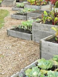 96 best raised garden beds images on pinterest gardening raised