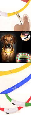 LED dog collar teddy leash harness cute pet collars Small dogs night
