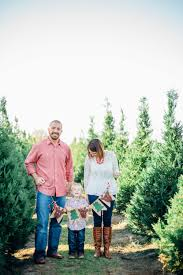 mcdowell family christmas tree farm midway ga lifestyle