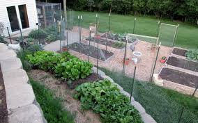 May May Kitchen My Kitchen Garden In May Counting My Chickenscounting My Chickens