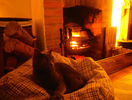 christmas cottages cats and carols adventures of a nice