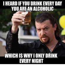 Drinking Memes - i heard if you drink every day you arean alcoholic every night