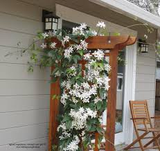 clematis on trellis entry mediterranean with entry ceramic outdoor