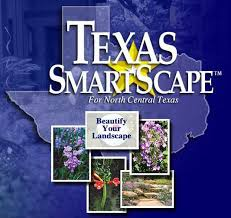 Texas Landscape Plants by Recommended Landscape Plants For North Central Texas
