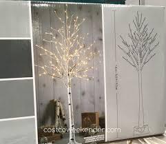 5 5 ft led birch tree costco weekender