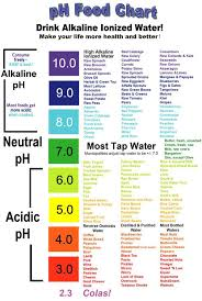 best 25 alkaline foods ideas on pinterest ph food chart
