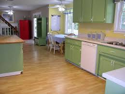 kitchen cabinet paint colors home design ideas